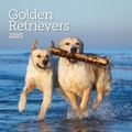 LANG® Avalanche Golden Retrievers 2015 Standard Wall Calendar