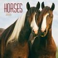 LANG® Avalanche Horses 2015 Standard Wall Calendar