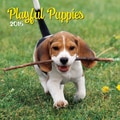 LANG® Avalanche Playful Puppies 2015 Standard Wall Calendar