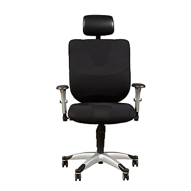 Sealy Fabric Computer and Desk Office Chair, Adjustable Arms, Black (DS-1942-452-2)