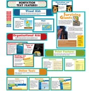 Carson-Dellosa Nonfiction Text Features Bulletin Board Set