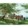 White Mountain Puzzles  White Mountain Puzzles Gathering Apples Jigsaw Puzzle