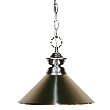 Z-Lite (100701NB-MBN) - Suspension à une lumière, 14 po x 8 po, nickel brossé