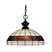 "Z-Lite (100701BRZ-F14-1) 1 Light Pendant, 14"" x 13"", Bronze"