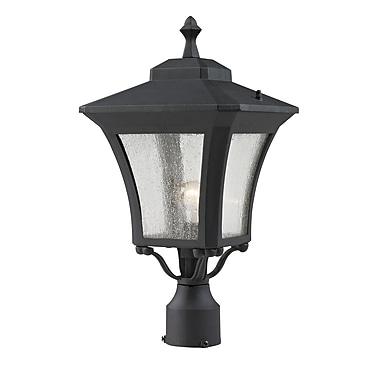 Z-Lite Waterdown (535PHM-BK) Outdoor Post Light, 10.13