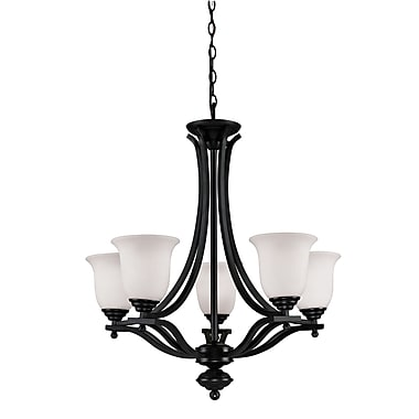 Z-Lite Lagoon (702-5-BRZ) 5 Light Chandelier, 26.5