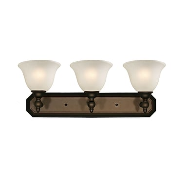 Z-Lite Clayton (904-3V) 3 Light Vanity, 8