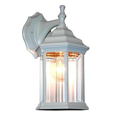 Z-Lite Waterdown (T21WH) 1 Light Outdoor Wall Light, 7.5