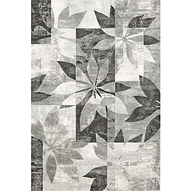 Feizy® Sorel Graphite Polyproplylene Fiber Pile Area Rugs