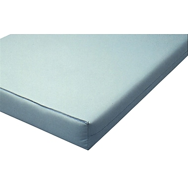 Mason Medical Institutional Foam Mattress, 84