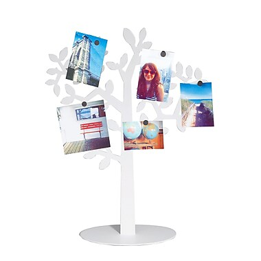 Umbra Laurel Display, White