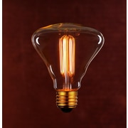 String Light Co Incandescent Light Bulb (Pack of 6)
