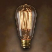 String Light Co Incandescent Light Bulb (Pack of 6)