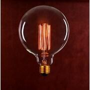 String Light Co Incandescent Light Bulb