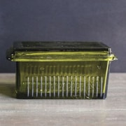 Creative Co-Op Casual Country Butter Dish; Green