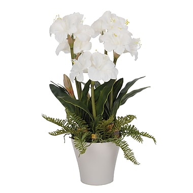 House of Silk Flowers Artificial Amaryllis in Vase