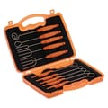 Schneider Stainless Steel 10 Piece Dipping Fork Set