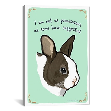 iCanvas The Other Bunny by Tiny Confessions Graphic Art on Canvas; 26'' H x 18'' W x 0.75'' D