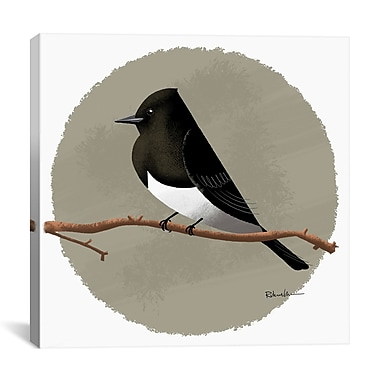 iCanvas Brian Rubenacker Black Phoebe Graphic Art on Wrapped Canvas; 27'' H x 27'' W x 1.5'' D