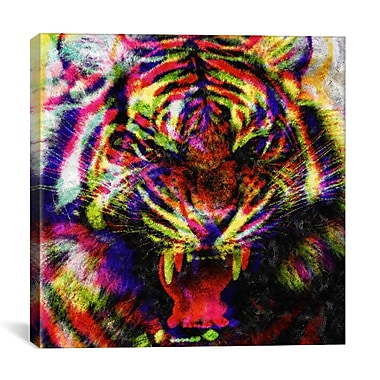 iCanvas Wild Colors by Maximilian San Graphic Art on Wrapped Canvas; 18'' H x 18'' W x 0.75'' D