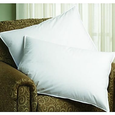 Downlite Hypoallergenic Sleep Balance Chamber Down and Feather Pillow; Jumbo