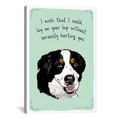 iCanvas Tiny Confessions Bernese Lap Dog by Christopher Rozzi Painting Print on Wrapped Canvas