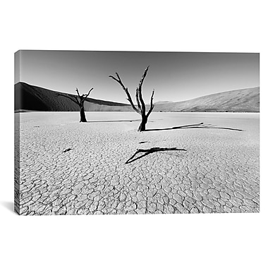 iCanvas Namibia Dead Vlei by Nina Papiorek Photographic Print on Wrapped Canvas