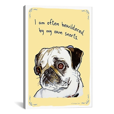 iCanvas Tiny Confessions Bewildered Pug by Christopher Rozzi Painting Print on Wrapped Canvas