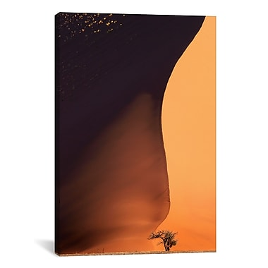 iCanvas Namibia The Dune Canvas Wall Art by Nina Papiorek Graphic Art on Wrapped Canvas