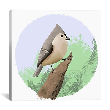 iCanvas Titmouse 12 by Brian Rubenacker Graphic Art on Wrapped Canvas; 18'' H x 18'' W x 0.75'' D