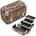 Hiker Professional Cosmetic Makeup Train Case