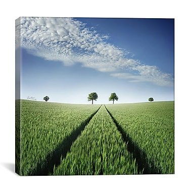 iCanvas 'Believe' by Ben Heine Photographic Print on Wrapped Canvas; 26'' H x 26'' W x 0.75'' D