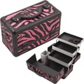Hiker Professional Cosmetic Makeup Train Case; Pink