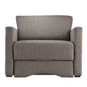 SEI Tyndall Polyester Sleeper Chair with Storage, Gray (UP9404)