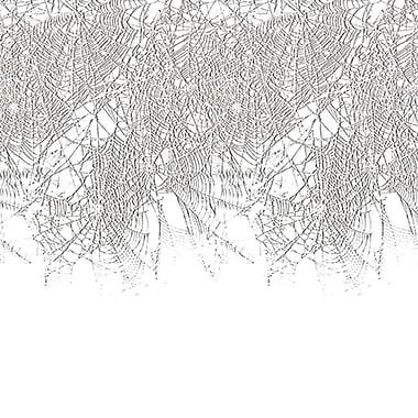 Bordure toile d'araignée, 24 x 30 pi, paq./2