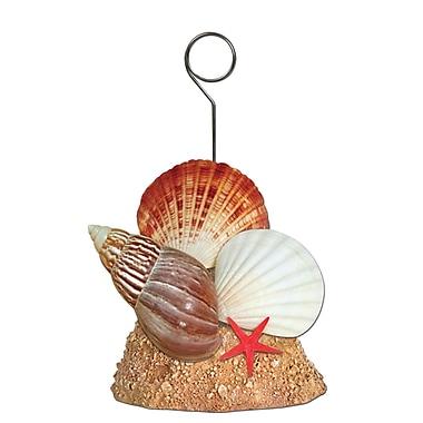 Beistle 6 oz. Seashell Photo/Balloon Holder, 3/Pack