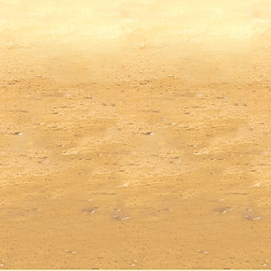 Beistle 4' x 30' Desert Sand Backdrop