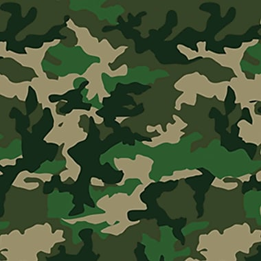 Camo Backdrop, 4' x 30'