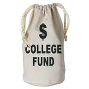 Beistle College Fund Money Bag, 8 1/2 x 6 1/2