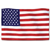 Beistle 18 American Flag Cutouts, 9/Pack