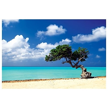 Caribbean Zen Moment, Stretched Canvas, 24