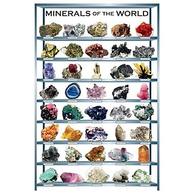 Minerals of the World, Stretched Canvas, 24