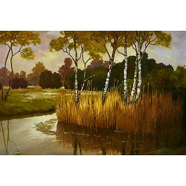 Reeds Birchs and Water II by Reynolds, Canvas, 24