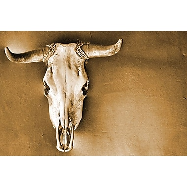 Sepia Steer by Brooks, Canvas, 24