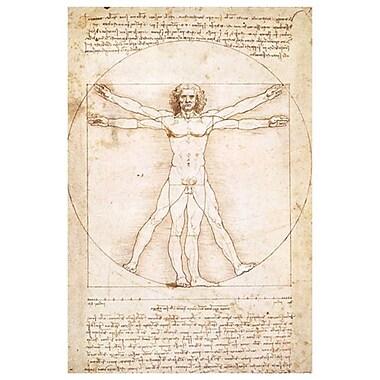Vitruvius Man de Da Vinci II, toile, 24 x 36 po