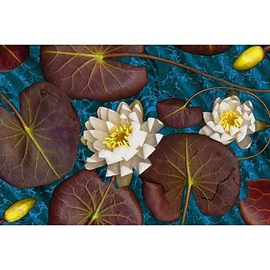 Blue Flower White Water de Klein, toile, 24 x 36 po