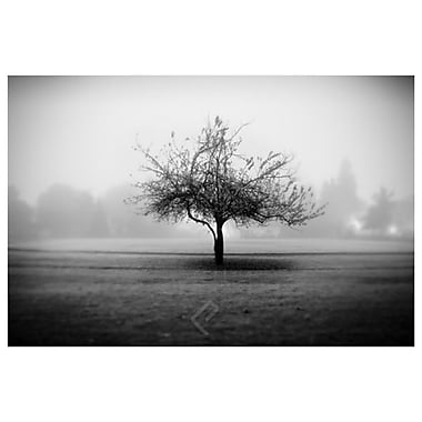 Playground Tree by Settle, Canvas, 24