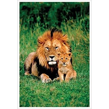 Lion et lionceau, toile tendue, 24 x 36 po