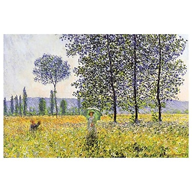 Field in Spring by Monet, Canvas, 24
