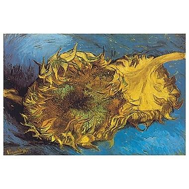Deux tournesols coupés de Van Gogh, toile, 24 x 36 po